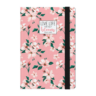 18-Month Weekly Diary - Medium With Notebook - 2020/2021