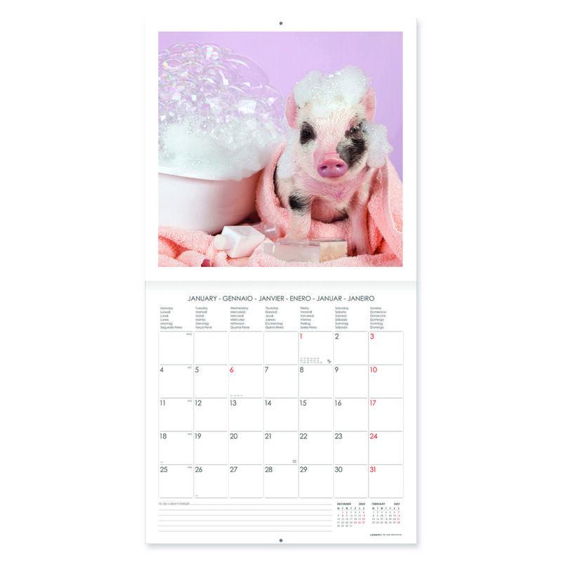 Calendario 2021 Da Appendere Calendario 2021 da Parete 30 x 29 cm Legami Calendari da muro