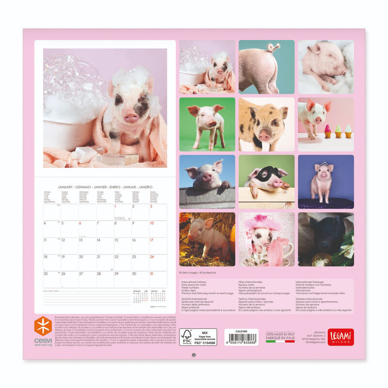 Wall Calendar 2021   30x29 Cm PIGGIES | Legami.com