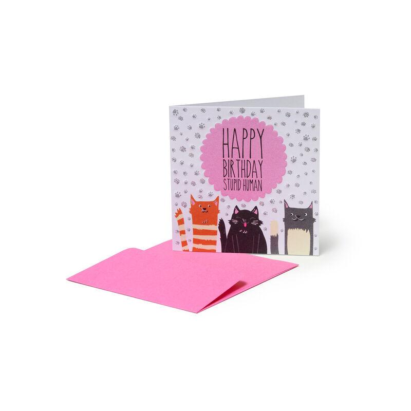 Greeting Cards - Gatti, , zoo