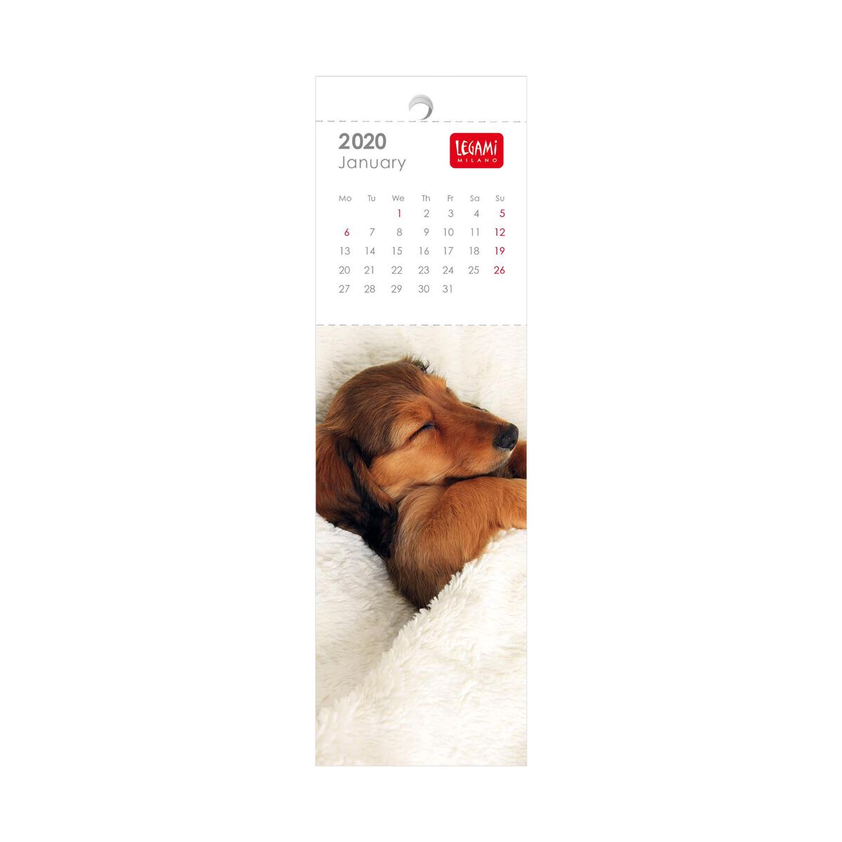 2020 - Bookmark Calendar - 5,5X18 Cm, , zoo