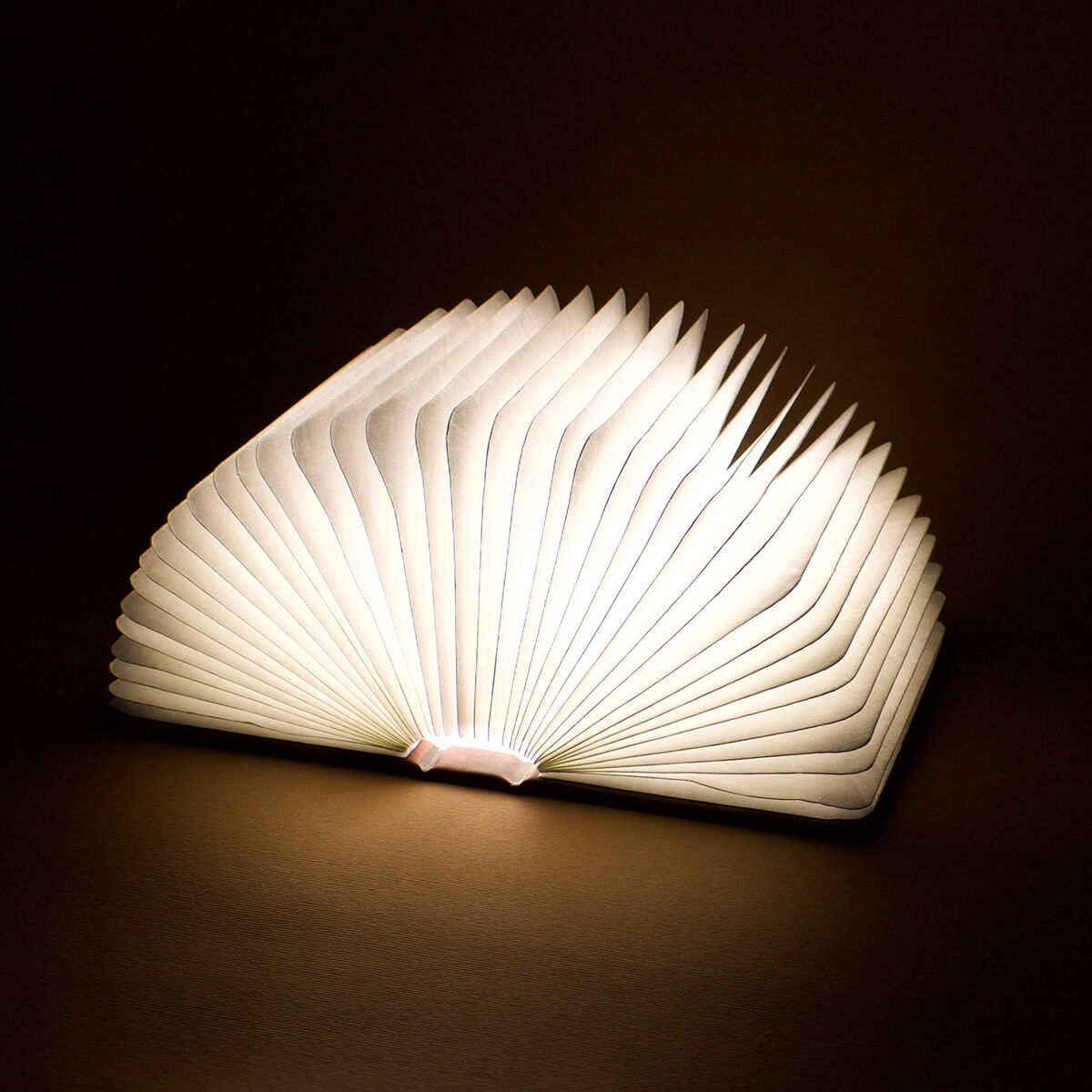 Light Book, , zoo