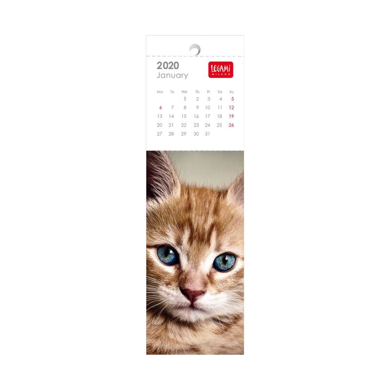 2021 - Bookmark Calendar - 5,5X18 Cm, , zoom